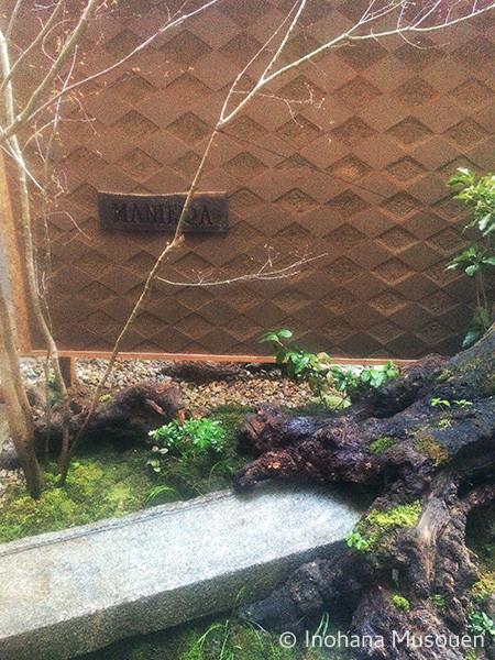 南青山 MANIERAの庭