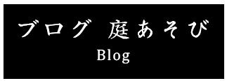 ブログ 庭あそび